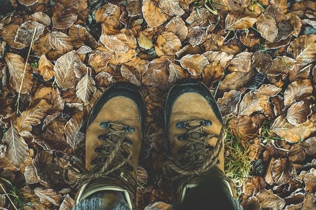 برگ های پاییزی زیر پوتین قهوه ای