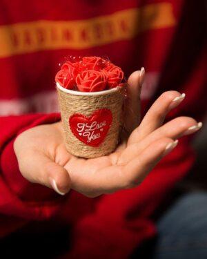 گیفت سبد گل رز - قرمز - سایز کوچک