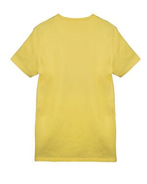 تیشرت مردانه R105- زرد (2)