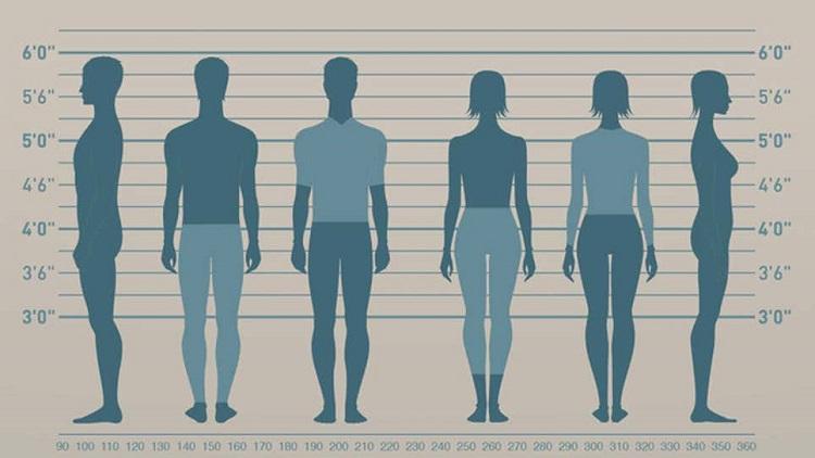 راهنمای انتخاب سایز لباس برای یک خرید اینترنتی راحت