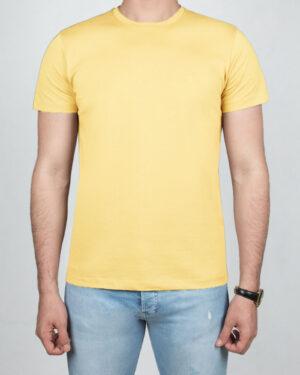تیشرت بیسیک مردانه VKTI981101- لیمویی (1)