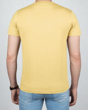 تیشرت بیسیک مردانه VKTI981101- لیمویی (2)